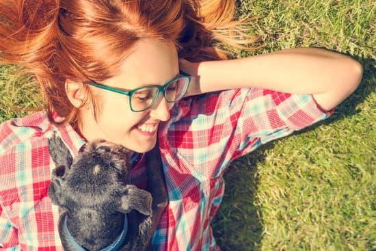 10 Tipps für mehr Coolness mit deinem Hund in der Hitzewelle