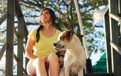 Urlaub mit dem Hund: Mit diesen 5 Tipps gelingt dir die Reise mit deinem Liebling