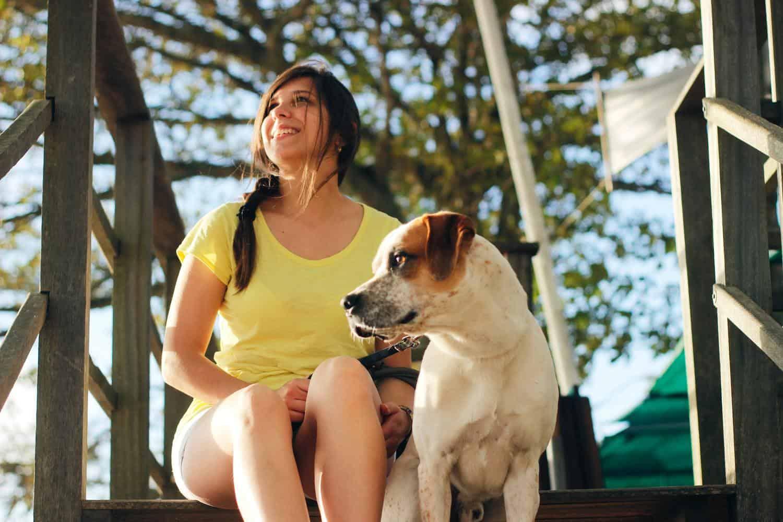 Tibeo Tierbetreuung Dienstleistungen 1