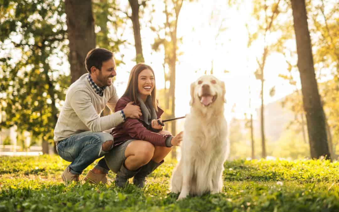 Gassi gehen in München – Die 5 schönsten Orte für deinen Hund