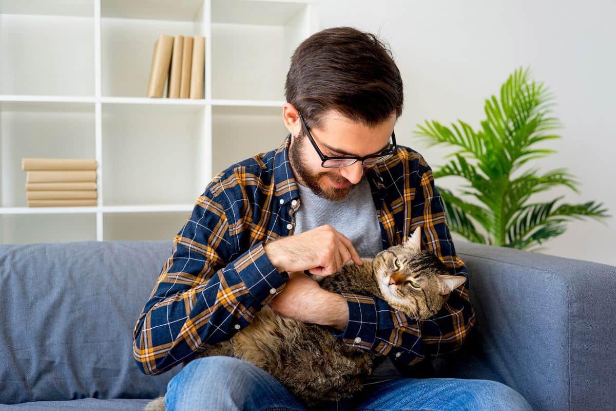 Tibeo Tierbetreuung Tagesbetreuung