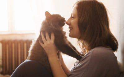 Haussitting & Hausbesuche: 4 Dos & 5 Don'ts für Tiersitter