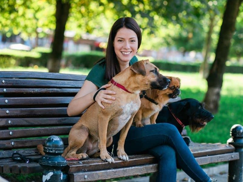 Tiersitter Job – 8 Tipps für erfolgreiche Tiersitter