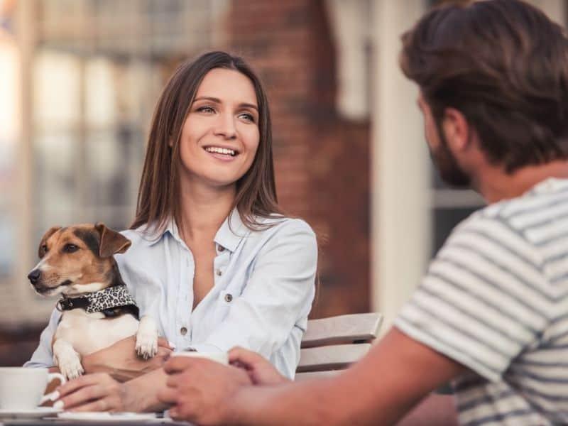 Tipps für Tiersitter Tibeo fragen
