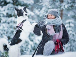 Gassi-gehen-winter-Tibeo