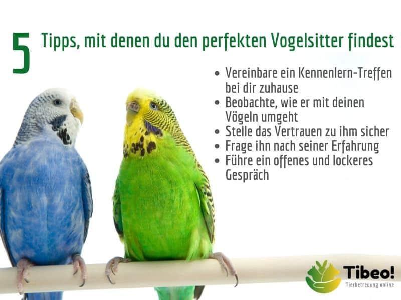 Vogelbetreuung Vogelsitter Tibeo Tipps