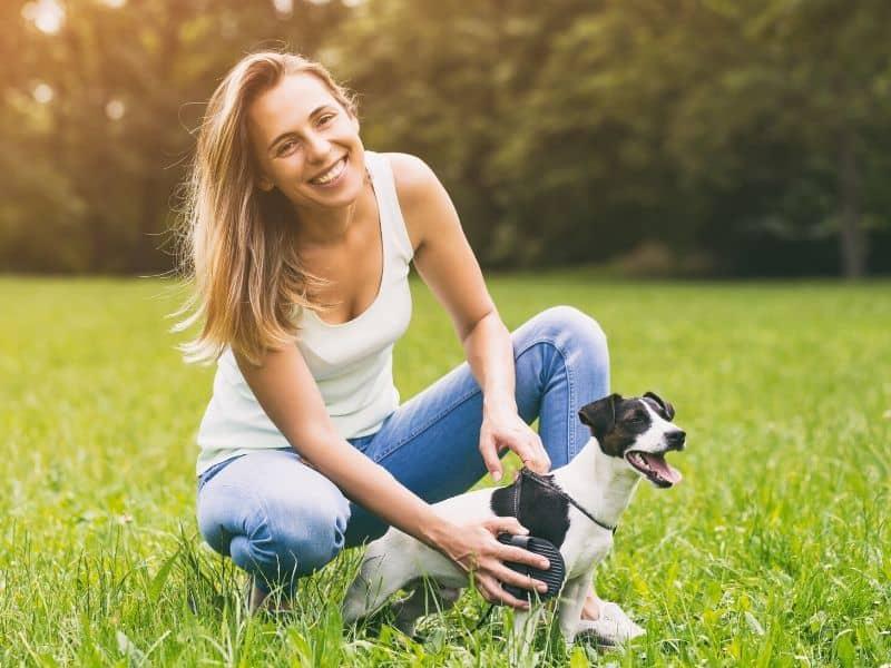 Abzeichen für Tiersitter – Das bedeuten die 6 Icons & so bekommst du sie