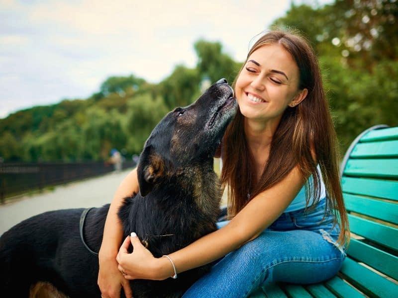 Wie finde ich den perfekten Hundesitter? Darauf musst du achten!