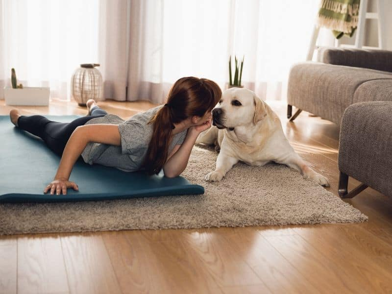 Fitness mit dem Hund zu Hause & unterwegs – 5 coole Übungen