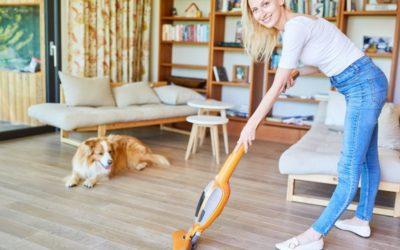 7 Basics für einen sauberen Tierhaushalt, die jeder kennen sollte